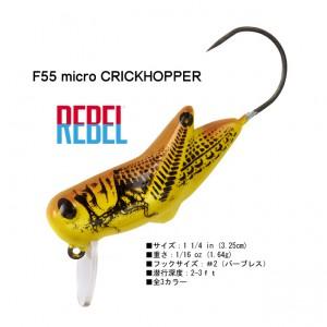 Rebel-Micro-CrickHopper